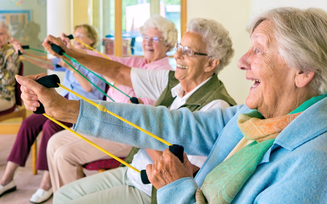 Elderly care chair exercises